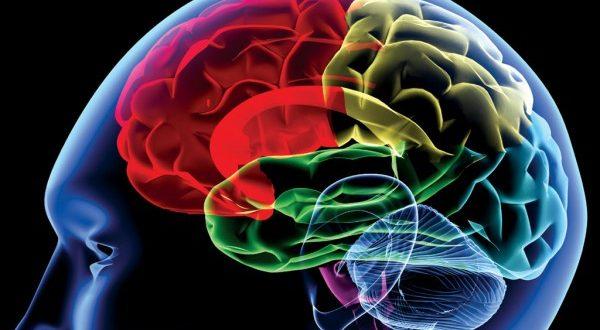 閲覧注意!脳内麻薬の意味とその作り方をご紹介