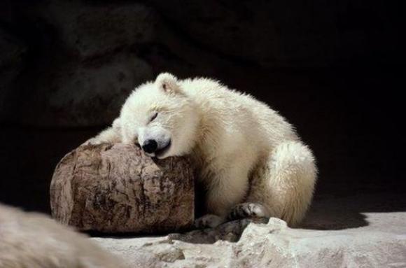 眠れない寝る方法!不眠症のあなたへおススメ7つのヒント