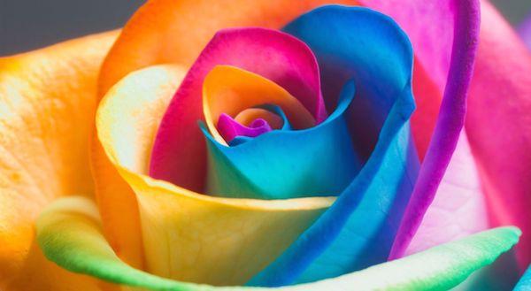 色彩心理学から学ぼう!7つの色が表す意味とは?