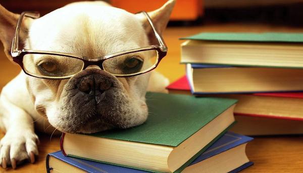 受験勉強中のモチベーションを継続させる7つの方法