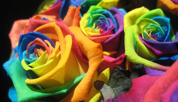 色の心理学☆好きな色から分析する性格診断テスト